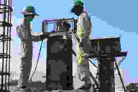Chuẩn bị Thế vận hội Tokyo 2020: Nhật Bản cần nhiều lao động Việt Nam