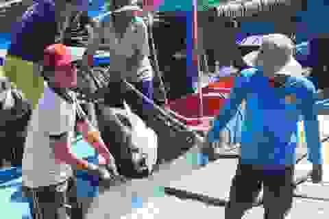 Ngư dân mất mùa cá ngừ đại dương