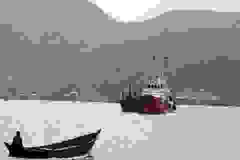 Tàu hàng đâm trúng tàu cá cùng 11 ngư dân rồi bỏ chạy