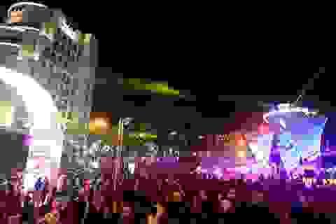 Hàng chục vạn lượt người tham quan đường hoa Xuân Đà Nẵng