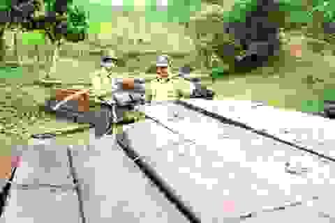 Bắt tạm giam 2 cán bộ trạm bảo vệ rừng Cà Nhông