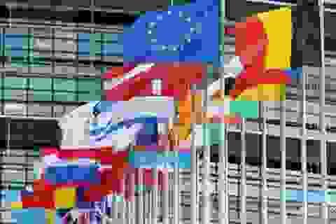 Hội nghị thượng đỉnh EU tập trung bàn cách trừng phạt Nga