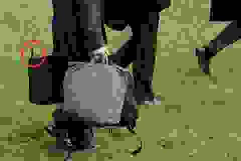 Chiếc cặp đen bí ẩn luôn ở cạnh tổng thống Mỹ