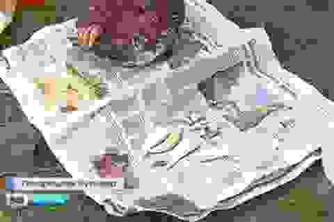 (Video): Hai người Việt ở Nga bị bắt vì buôn hổ Amur quý hiếm