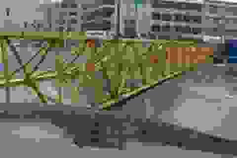 Mưa bão tại Trung Quốc gây thiệt hại nghiêm trọng
