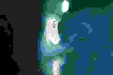 Trung Quốc cô độc trong tham vọng nuốt trọn Biển Đông