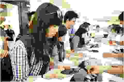 Smartphone đua nhau giảm giá ngày Tết