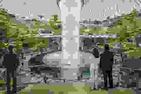 Những sân bay mới tráng lệ nhất thế giới