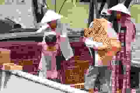 9,2 triệu USD hỗ trợ để giảm thiểu lao động trẻ em tại Việt Nam