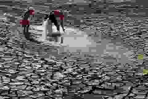 Đầu tư hệ thống thủy lợi chống hạn cho Ninh Thuận