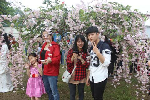 Tranh thủ ngày nghỉ, dân Hà Nội đổ xô đi ngắm hoa anh đào