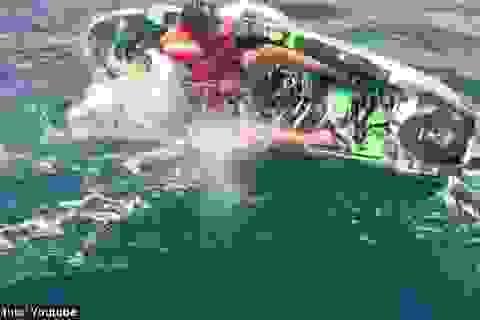 Rùng mình cảnh người đàn ông bị cá mập tấn công khi đang chèo thuyền