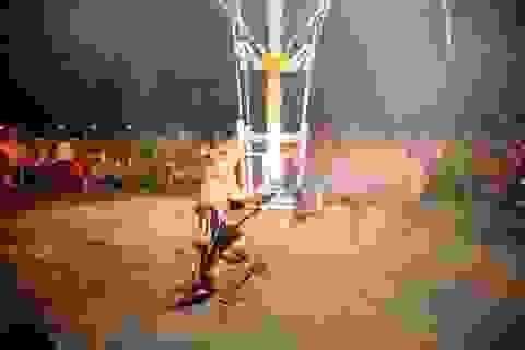 Tưng bừng lễ hội đâm trâu