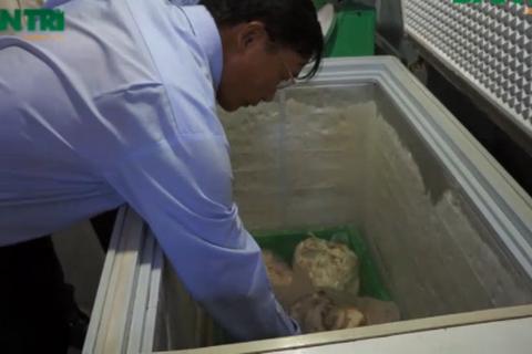 Sau vụ phát hiện thịt, cá bẩn: Thanh tra hàng loạt bếp ăn trong trường học
