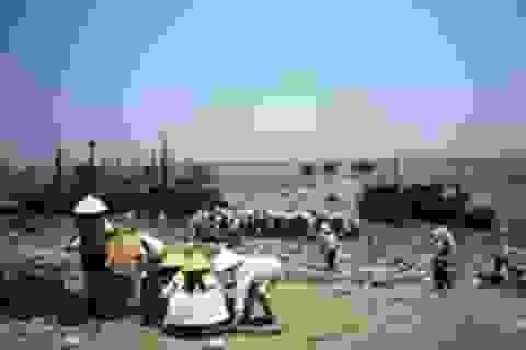 Về thăm vùng biển có gần 200 phụ nữ góa chồng