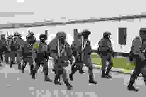 Nga giải thích quyết định cho phép triển khai quân ở Ukraine