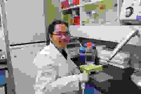 Lần đầu tiên nữ nhi Việt góp mặt Top 15 Nhà khoa học nữ trẻ tài năng quốc tế