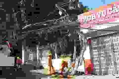Truy tìm ô tô húc gãy cột điện, làm mất điện cả khu phố