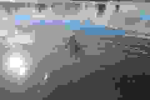 Nhậu xong đi bơi, một thanh niên chết đuối
