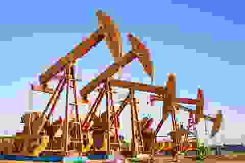 Tăng liền 4 phiên, giá dầu cao nhất 1 tháng