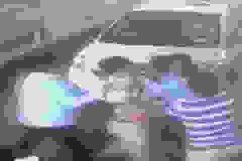 """4 kẻ đánh """"hội đồng"""" nữ nhân viên thu phí cầu Bãi Cháy trình diện"""