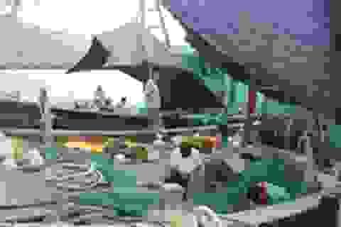 Ngư dân khốn đốn vì cảng cá bồi lắng
