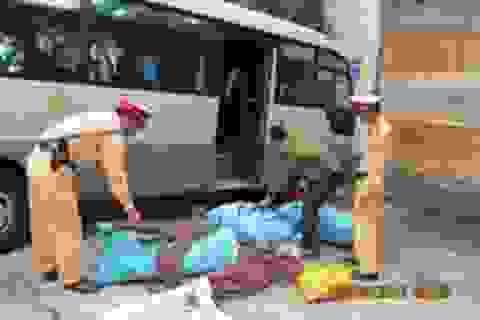 Phát hiện xe khách vận chuyển 150kg gỗ sưa
