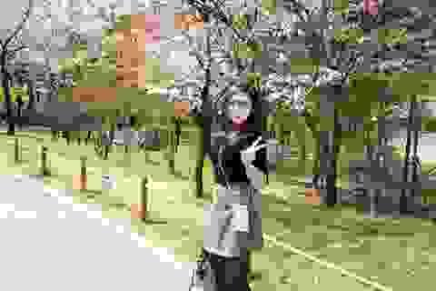 Á hậu Tú Anh rạng rỡ ngắm hoa anh đào tại Hàn Quốc