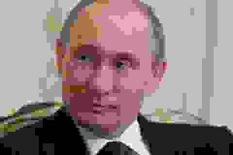 """Tổng thống Putin sẽ dự khai mạc """"Những ngày Văn hóa Nga tại Việt Nam"""""""