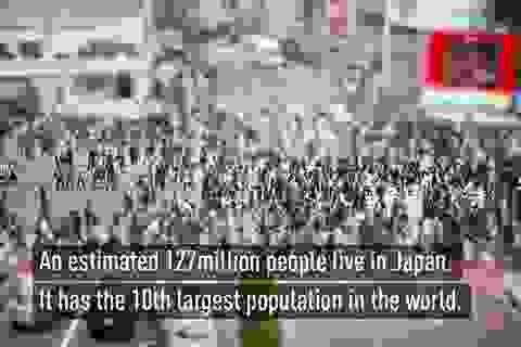Những điều thú vị có thể bạn chưa biết về Nhật Bản