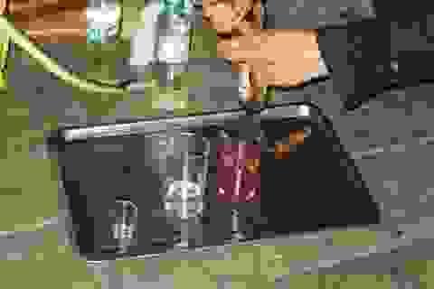 Đến Việt Nam, xin đừng uống tiết rắn!