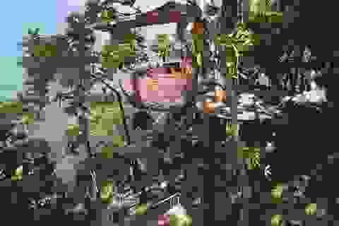 Độc đáo nhà hàng... vắt vẻo trên cây tại Thái Lan