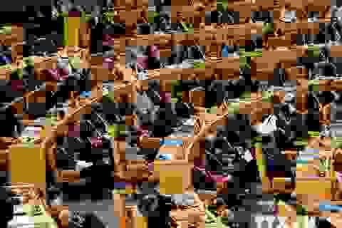 Việt Nam dự Hội nghị bộ trưởng thứ 17 Phong trào Không liên kết