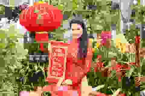 Ngắm chợ hoa Tết của người Việt ở Texas cùng hoa hậu Quý bà