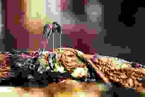 Độc đáo hình ảnh những chiếc kim băng kể chuyện tình
