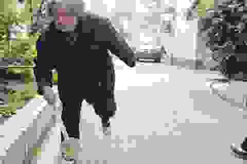 Cụ bà 80 tuổi giết 1.000 con ruồi mỗi ngày