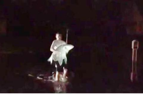 Bắt được cá chép khủng trên đường phố ngập nước