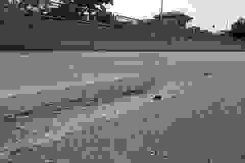 Một Chi cục trưởng bị đình chỉ công tác vì quốc lộ 1A hư hỏng