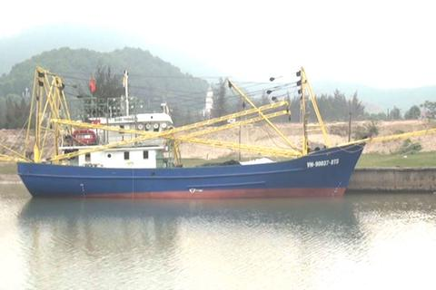 """Ngư dân """"bội thu"""" từ chuyến vươn khơi đầu tiên bằng tàu chụp mực, vỏ sắt"""