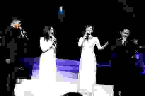 Sự thuyết phục của nhạc Trịnh