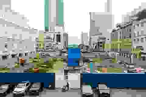 Hoàn tất nâng cấp đường Nguyễn Huệ trước 20/4/2015