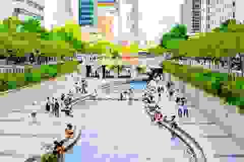TPHCM: Tour đi Hàn Quốc giảm mạnh do dịch MERS