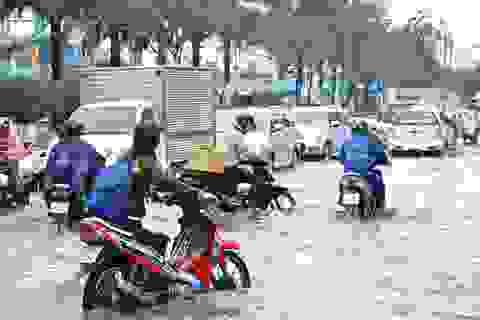 TPHCM: Tốn 180 tỷ đồng để chống ngập cho... 1 km2