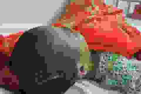 Đi tìm sự thật nghi án người mẹ tiêm thuốc độc hai con nhỏ để chết chung