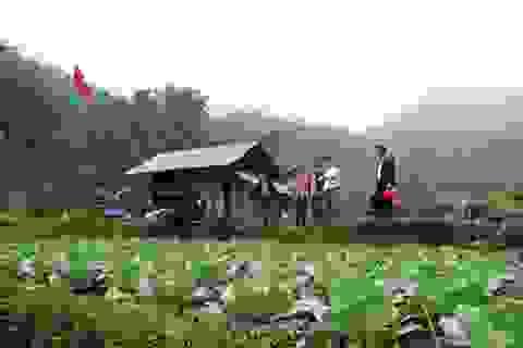 Trang trại trên núi của 7 ông chủ người Tày