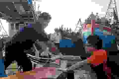 Điều tra nguyên nhân 4 thuyền viên tử vong trong hầm cá