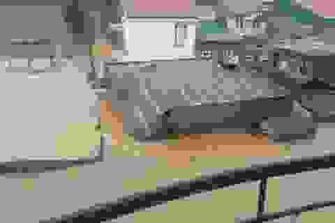 Bơi qua nước nhiễm điện, cậy mái tôn cứu 3 mẹ con trong nước lũ