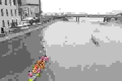 TPHCM: Xem đua thuyền trên kênh Bến Nghé