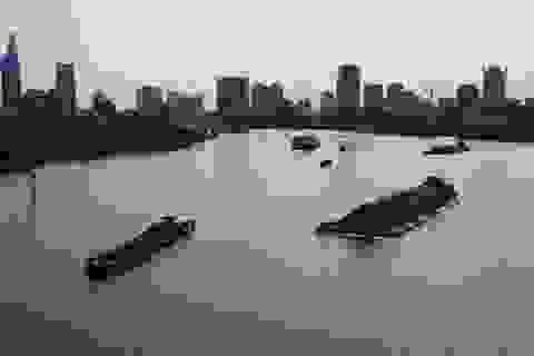 Nhiều nhà khoa học cùng bàn cách cứu dòng sông Sài Gòn - Đồng Nai