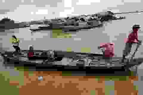 Hơn 300 chuyên gia tìm hướng giải quyết khủng hoảng biến đổi khí hậu